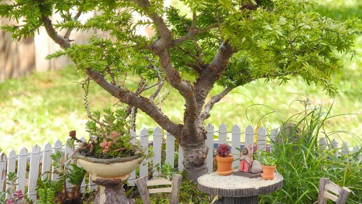 Beautify Your Space With These Fairy Garden Ideas