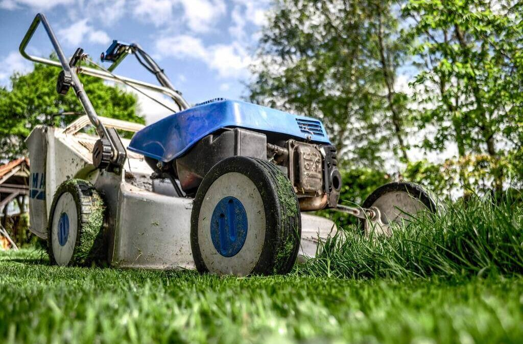 How to Launch a Lawn Care or Landscaping Business