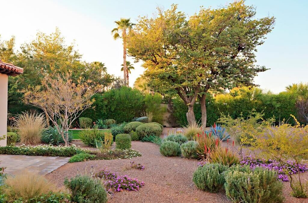 Know All About Desert Landscape