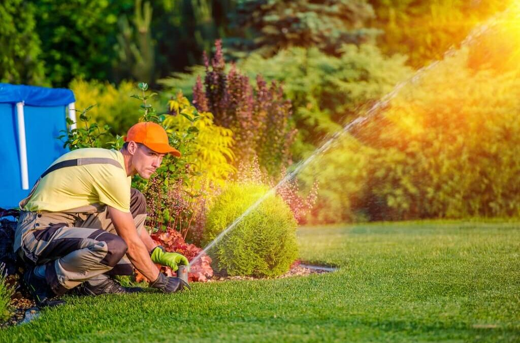 Easy Lawn Care Tips – Get a Greener, Healthier Lawn with Less Work